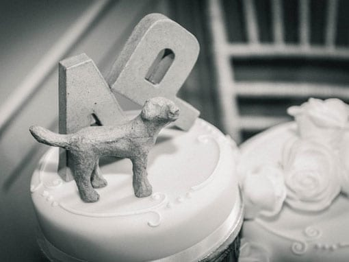 ANNEKA & PHIL – WEDDING CAKE